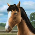 Download GAME_CASUAL My Horse APK