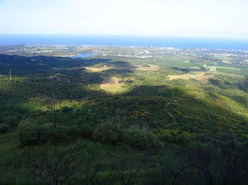 terrain à Linguizzetta (2B)