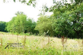terrain à Castelnau-Chalosse (40)