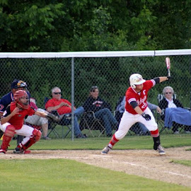 by Don Cailler - Sports & Fitness Baseball