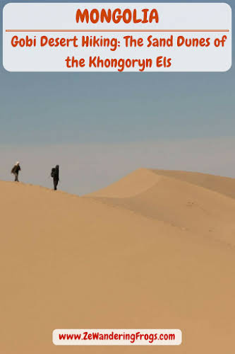 #Mongolia // Have you ever tried to #hike up a #dune like the #Khongoryn Els in the #Gobi #Desert? If you are hiker like us, this shouldn't be a big issue. Right? Think again. // #AdventureTravel by Ze Wandering Frogs