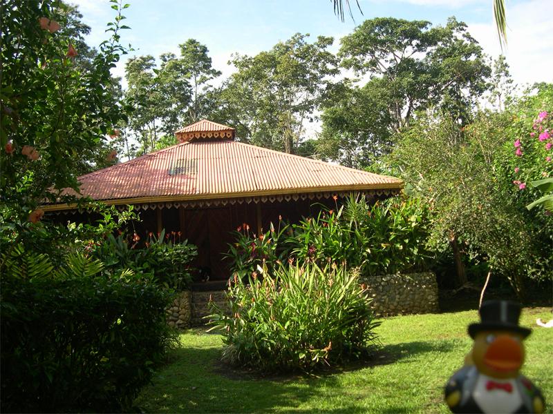 Photo: the bungalow has a lush garden