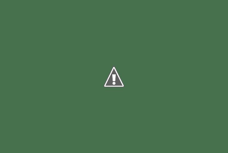 penyelam menikmati petualangan di dalam laut