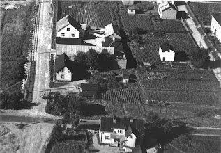 Photo: Ilmakuva Lounasvuoren talosta 1947