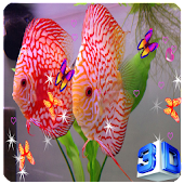 3D Discus Aquarium Live Wallpapers