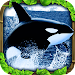 Orca Simulator icon