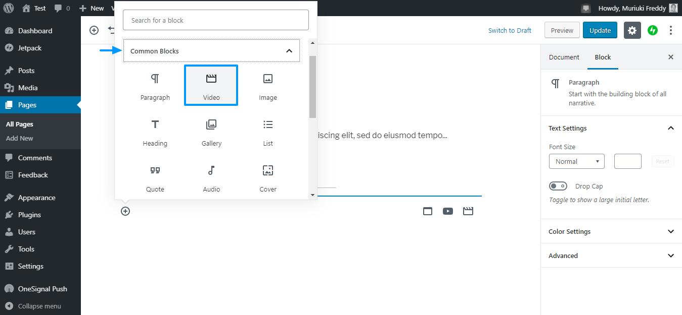 Video block in gutenberg editor