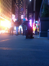 Photo: Little dog hanging on the sidewalk in Times Square in New York