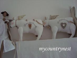 Photo: cow angels tilda