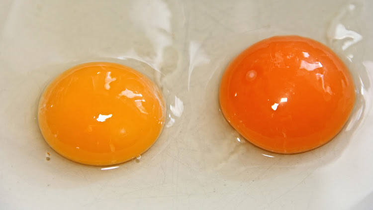 Imported eggs suspected in Durban's Salmonella outbreak