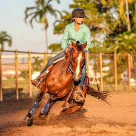 by Denise Flay - Sports & Fitness Other Sports