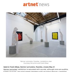 Rainier Lericolais, Fossiles, artnet news, 2014