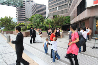 Photo: wedding on the avenue of stars