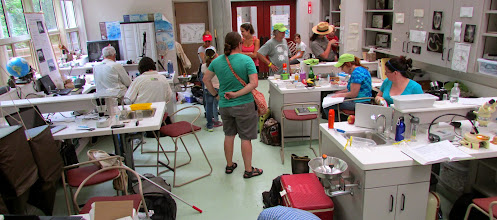 Photo: The lab in action.