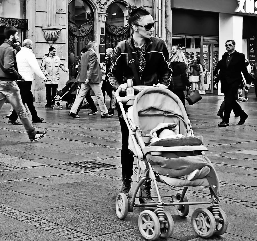 by Dragana Jankovic - Black & White Street & Candid ( black and white, belgrade, street, city life, candid, street scene, street photography,  )