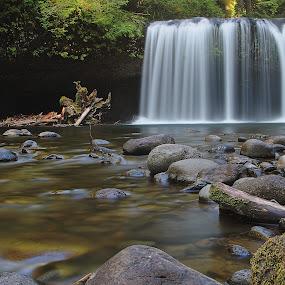 Upper Butte Creek Falls by Craig Pifer - Landscapes Waterscapes ( oregon, waterscape, waterfall, butte creek, long exposure, landscape )
