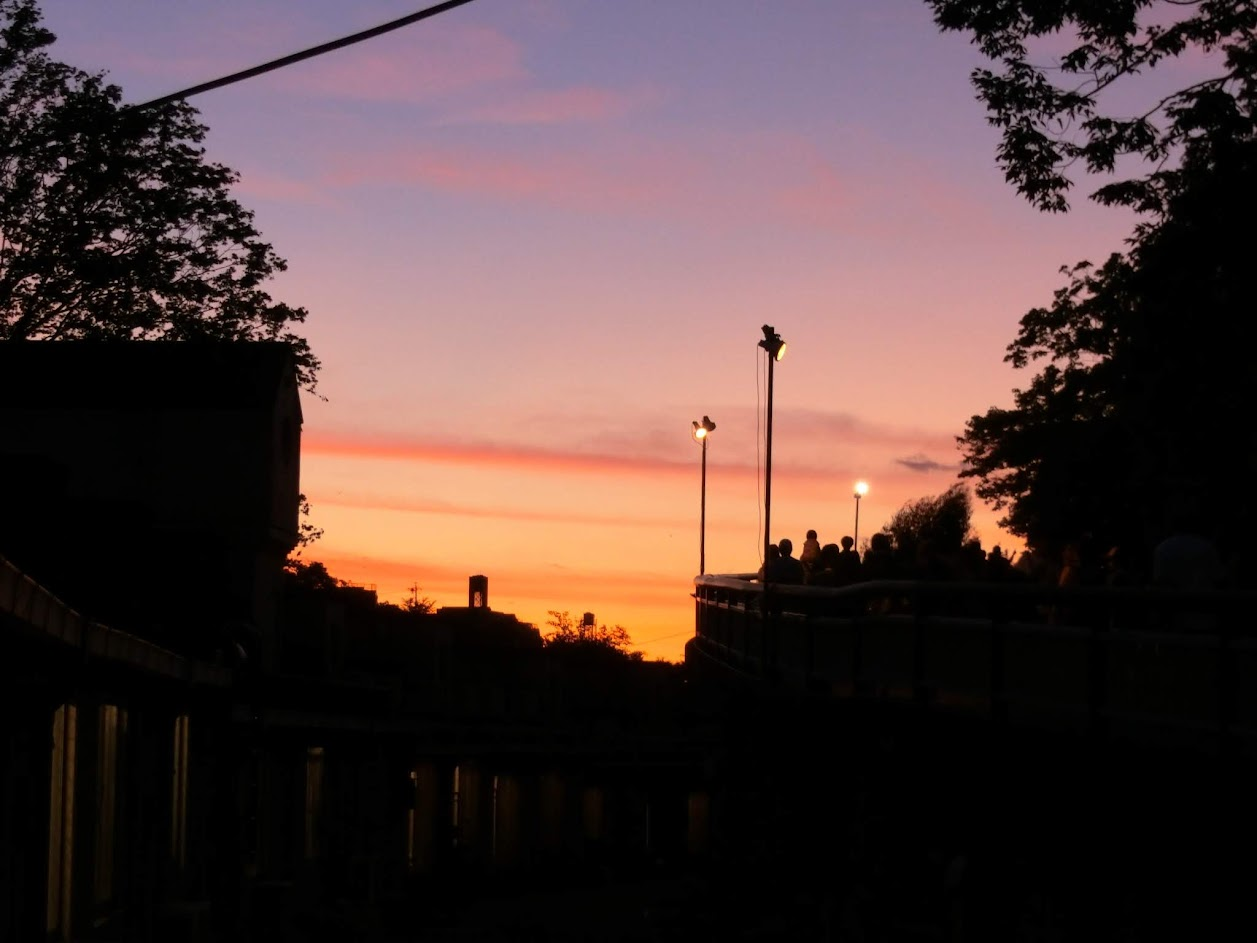東山動物園内から撮影した夕日