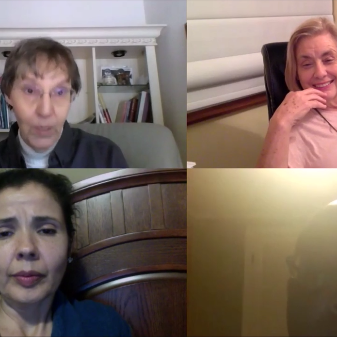 Brainstorming conference call with educators