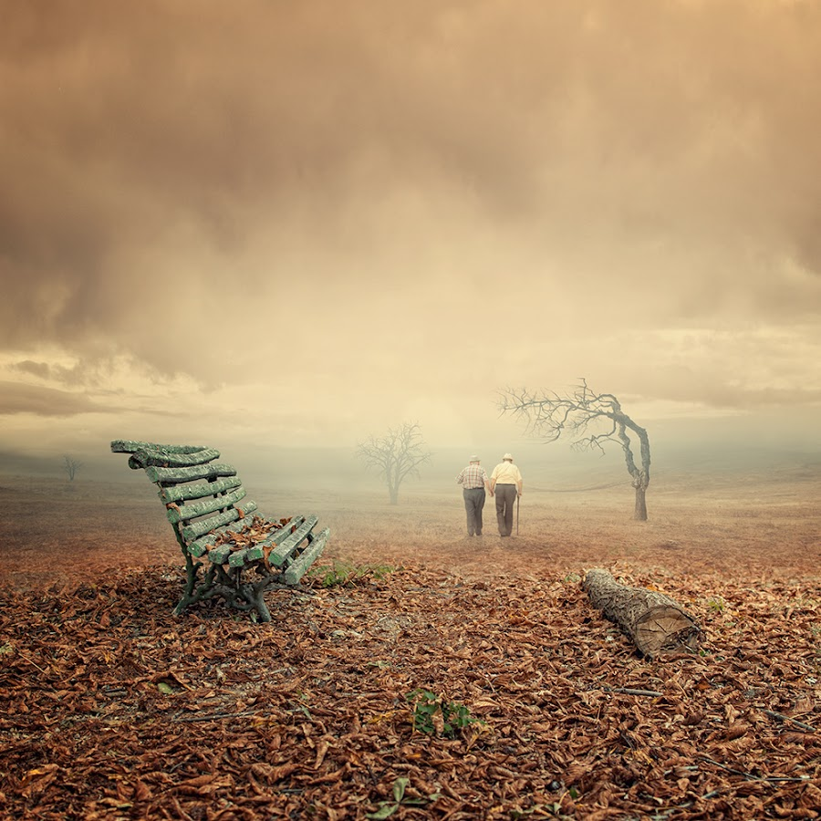 The endless stories by Caras Ionut - Digital Art Things ( old, bench, fog, autumn, tutorial, leaf, frined, mist, photoshop )