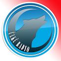 Ülkü Radyo - Ülkücü Görüş Milliyetçi Ses icon