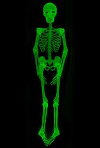 Självlysande skelett