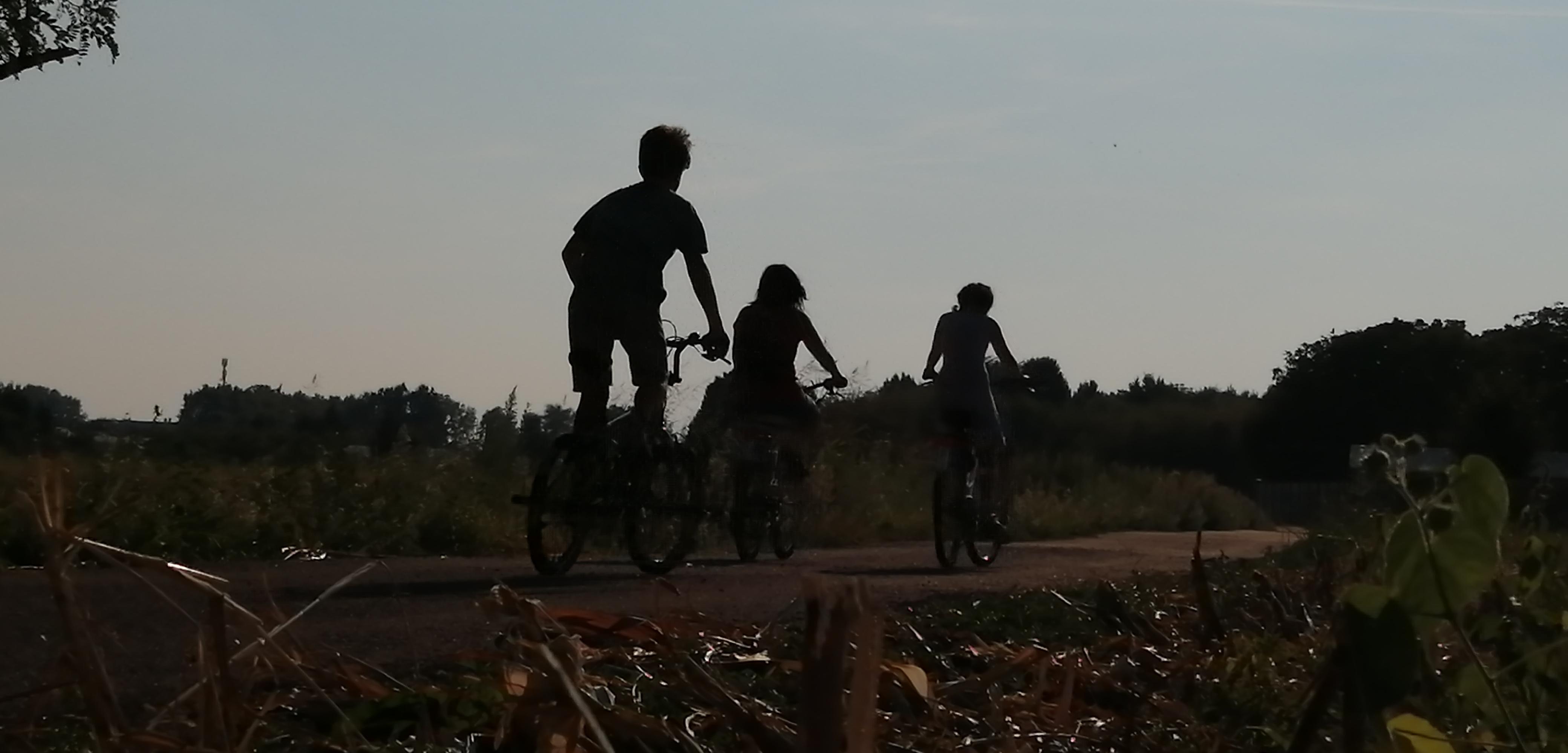 In bici per le campagne