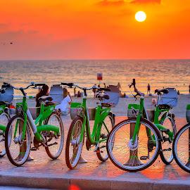 telaviv by Joel Adolfo - Transportation Bicycles ( bicycles, transportation )