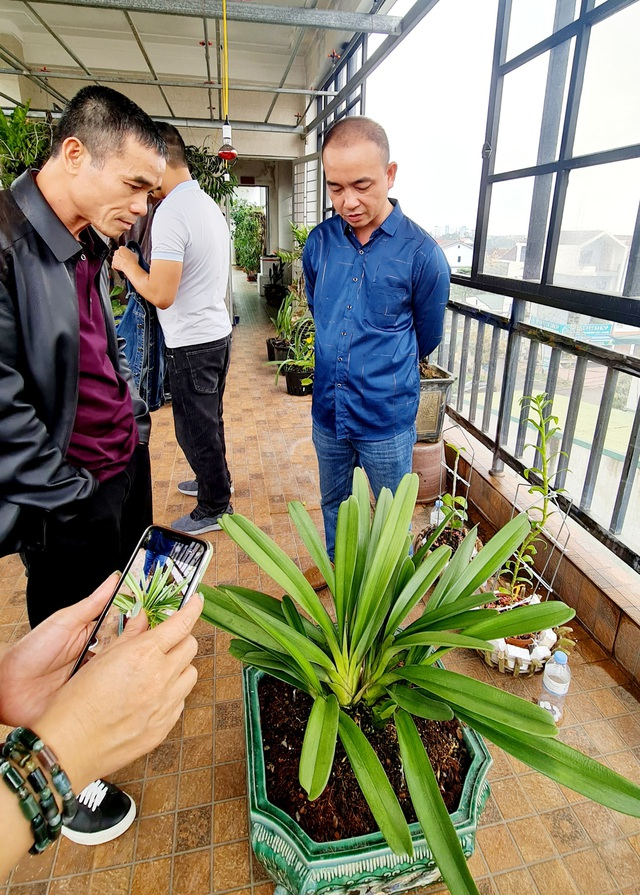 Thương vụ chuyển nhượng lan kiếm chấn động đất xứ Nghệ - 6