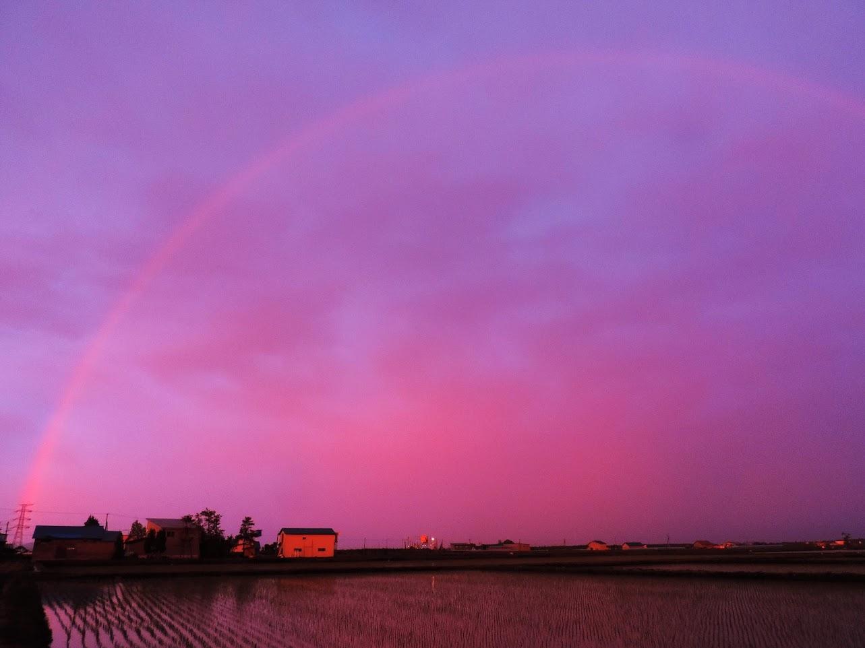 「夕景の虹」夕方、一瞬の虹が…。