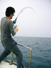 Photo: 澤さんにも! これもでかい! 最後のフィニッシュで船頭がタモ入れ失敗! せっかくの自己記録だったヒラマサ(推定12kgかな)取り逃がしてしまいました。 本当に申し訳ありませんでした。 以後、この様なことがないよう集中して最後まで行いたいと思います。