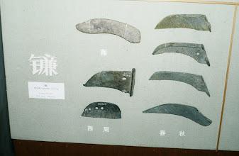 Photo: 10940 上海/上海博物館/青銅製鎌