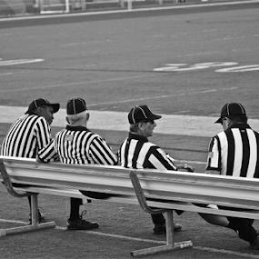 Football Stripes by Susannah Lord - Black & White Sports ( bench, referees, white, stripes, black,  )