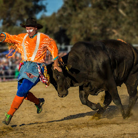 Clowning Around by Paul Milliken - Sports & Fitness Rodeo/Bull Riding ( clown, rodeo clown, rodeo, bull, dangerous )