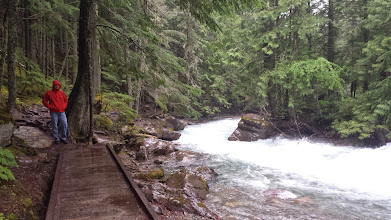 Photo: On the trail to Avalanche Lake : a bridge!