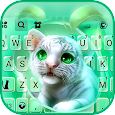Cute Baby Tiger Keyboard Background