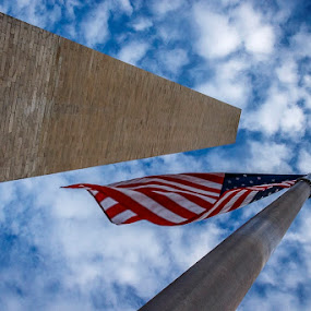 Looking Up by Steve Fisher - Buildings & Architecture Statues & Monuments ( wa dc trip 2015 )