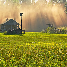 Light Shaft by Reva Fuhrman - Landscapes Prairies, Meadows & Fields ( landscape light rays weather field storm,  )