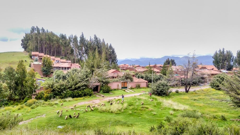 watching the countryside from cusco in peru