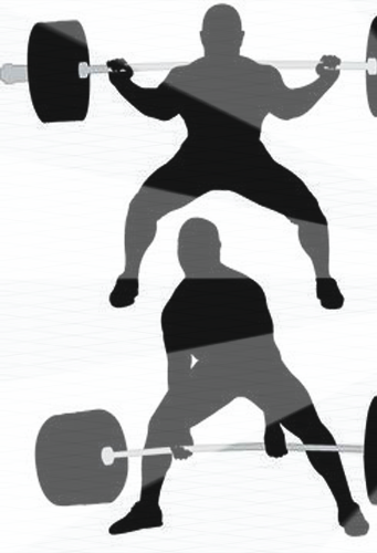 Bodybuilding workout tutorial
