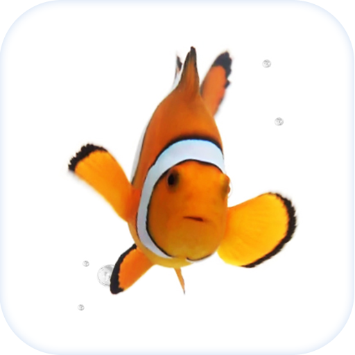 Clown Fish .. file APK for Gaming PC/PS3/PS4 Smart TV