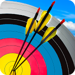 Real Archery Shooting Icon