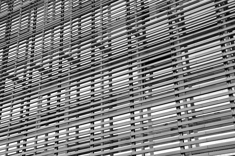Lines di marco_frosini_