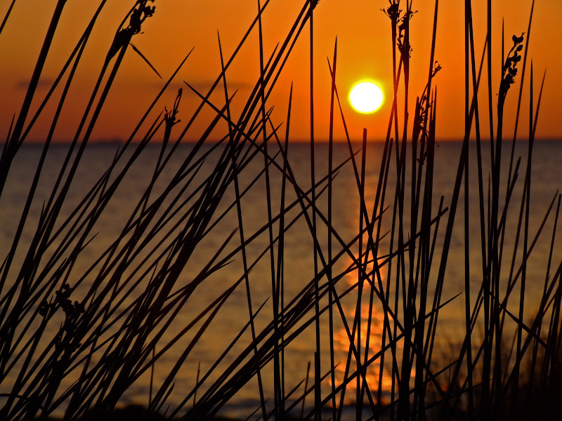 sunset di fast.dp