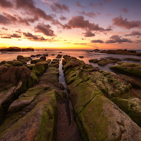 Green Tail by Christianto Mogolid - Landscapes Caves & Formations ( sunset background, leading line, cloudy day, sunset, moss, malaysia, rock formation, rock wit moss, sabah,  )