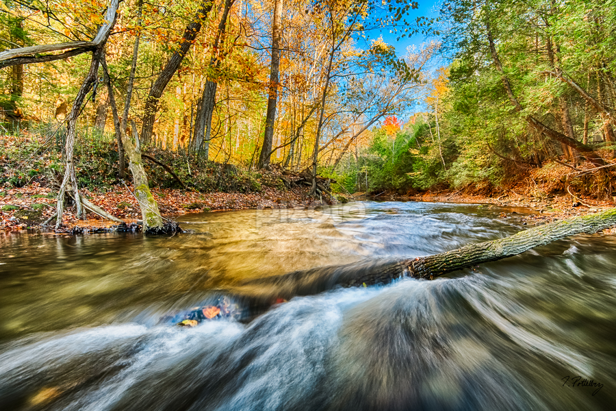 Falltime on Big Creek by Trevor Pottelberg - Landscapes Waterscapes ( shore, reflection, canada, polarizer, moss, ontario, scenic, landscape, colours, delhi, big creek, t.pottelberg, autumn, trevor pottelberg, fall, trees, rocks, river )