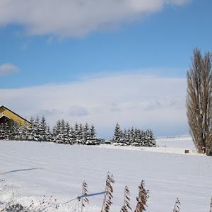 デミオ DE5FS スポルト 2008年式のカスタム事例画像 やま 【10563】さんの2020年12月22日06:24の投稿