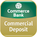 Commercial Deposit icon
