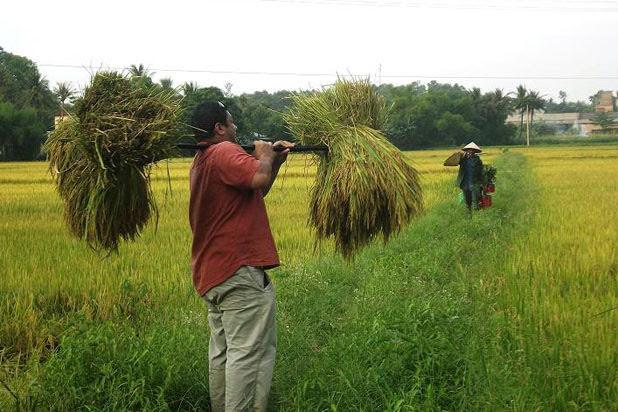 Agriculture à Thuy Bieu