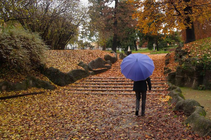 A passeggio nel parco di Giomi
