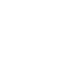 Mirror Wills only GBP 18 each